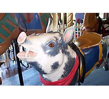 Pig with Red Bandana Photographic Print
