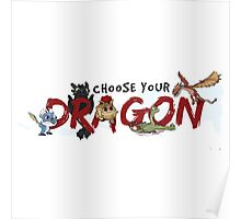 Choose your Dragon! Poster