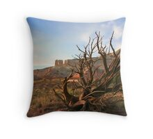 Still Nature, Ghost Ranch, New Mexico Throw Pillow