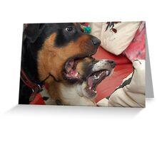 Dogs Chorus Greeting Card