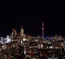 Toronto at night by yvonne willemsen
