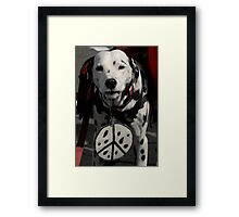 Peace Now, Bow-Wow! Framed Print