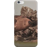 PEAR AND WOOD STILL LIFE iPhone Case/Skin