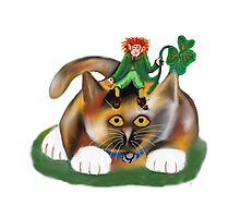Calico Kitten and her Leprechaun Pal Photographic Print