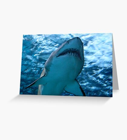 WATCH OUT JAMES, THE SHARK Greeting Card