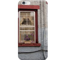window plants iPhone Case/Skin