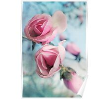 Laura Ashley Inspired Springtime Magnolias on Blue Sky Poster