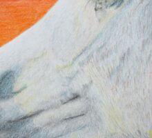 """""""Arabian Colors"""" - Arabian stallion Sticker"""