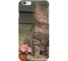 NO CAT FOOD? Surely you jest..... iPhone Case/Skin