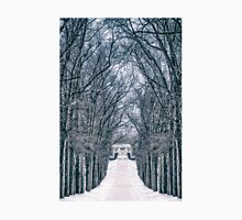 Towards The Lonely Path Of Winter Unisex T-Shirt