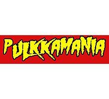 Pulkkamania! (yellow) Photographic Print