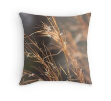 Scattered Passions Throw Pillow