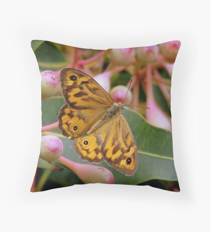 Heteronympha Merope  Throw Pillow