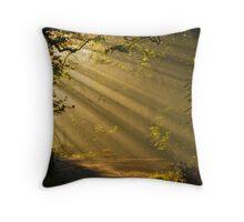 sunbeams at hebden bridge Throw Pillow