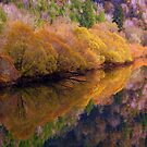 Reflections on the Siuslaw River. by aussiedi