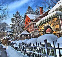 Bright winter day by LudaNayvelt