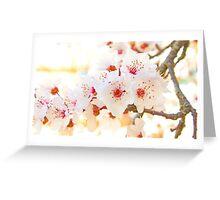spring . 20 Março 2015. Greeting Card