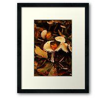 Mushroom Dress Up Framed Print