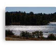 ramona lake Canvas Print
