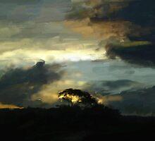 Sunset by Nicole Whittaker