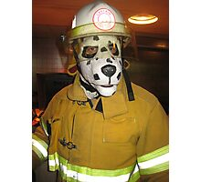 fireman dog Photographic Print