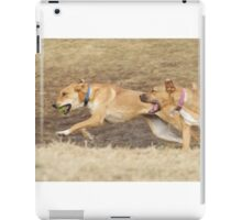 Gracie and Unkown iPad Case/Skin