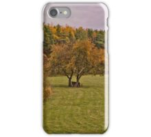 Retreat iPhone Case/Skin