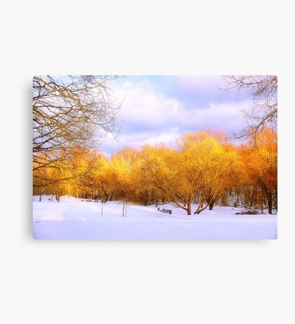 Autumn in Winter Canvas Print