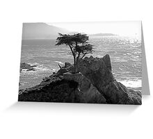 Lone Cypress--Monterey California  Greeting Card