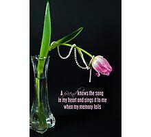 Pearls Of Wisdom Photographic Print