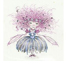 Cotton - The Cotton Pixie by Lindsey Davies