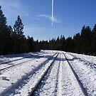 Snowy Tracks by NancyC