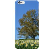 A Field of Daffodils iPhone Case/Skin