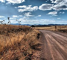 Exploring Sonoita,AZ by Barbara Manis
