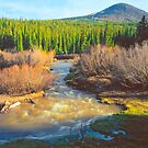 Michigan Creek below Georgia Pass 4X5 by Paul Gana