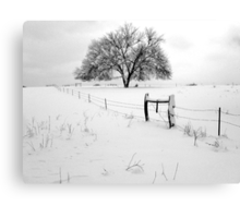 Lonely Tree and Pasture in Deep Snow Canvas Print