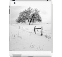 Lonely Tree and Pasture in Deep Snow iPad Case/Skin