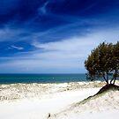 South Stradbroke Island by Ken Wright