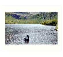 Bull in an idyllic lake Art Print
