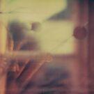 #009 by Paul Desmond