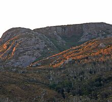 Early Morning Light - Cradle Mountian National Park, Tasmania by Ruth Durose