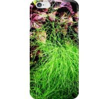Fennel and Japanese steak plant at the allotment  iPhone Case/Skin