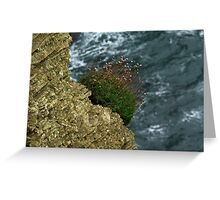 Cliffs Of Moher, Ireland Greeting Card
