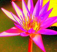 Psycho Lily by Berni Stanley