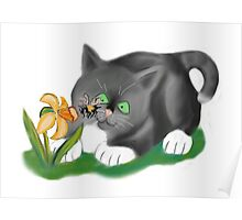 Bee, Daffodil and Grey Kitten Poster