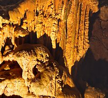 Yarrongobilly Caves by Darren Stones