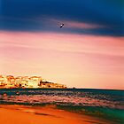 Lomo Holga AT BONDI by jiblittle