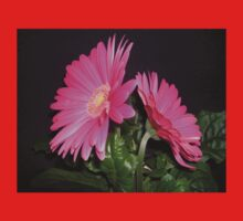 A Gerbera For Mothering Sunday Kids Clothes