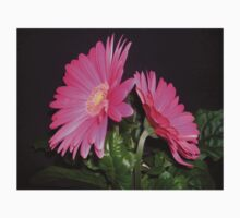 A Gerbera For Mothering Sunday One Piece - Short Sleeve