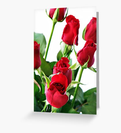 ~ red roses for my love ~ Greeting Card